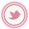 シュガーパレード official Twitter